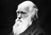 Sulle orme di Darwin